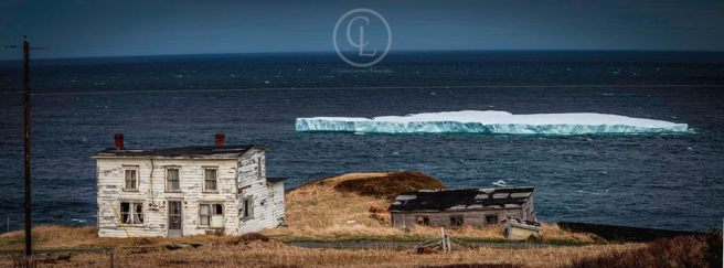 Lower Island Cove by Chelsey Lawrence Photography