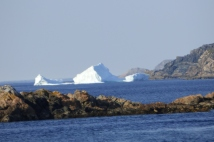 Purcell's Harbour, NL June 16/16 Newfoundland Iceberg Reports